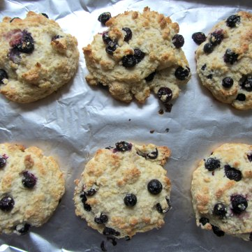 Blueberry Drop Scones pan